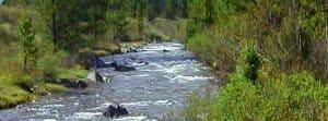 Acequias River, Venezuala
