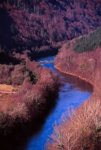 Kupa River, Croatia