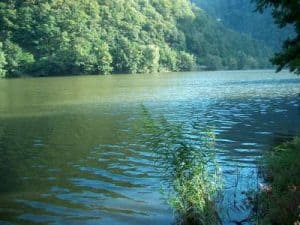 Olt River Rafting Romaina