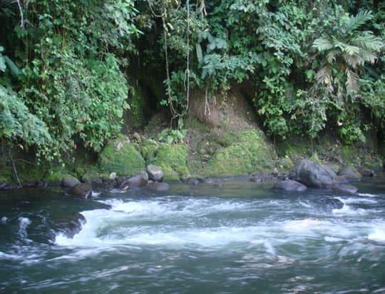 Rio Chiriqui, Panama