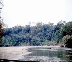 Rio Misahualli, Ecuador
