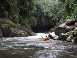 rio hollin